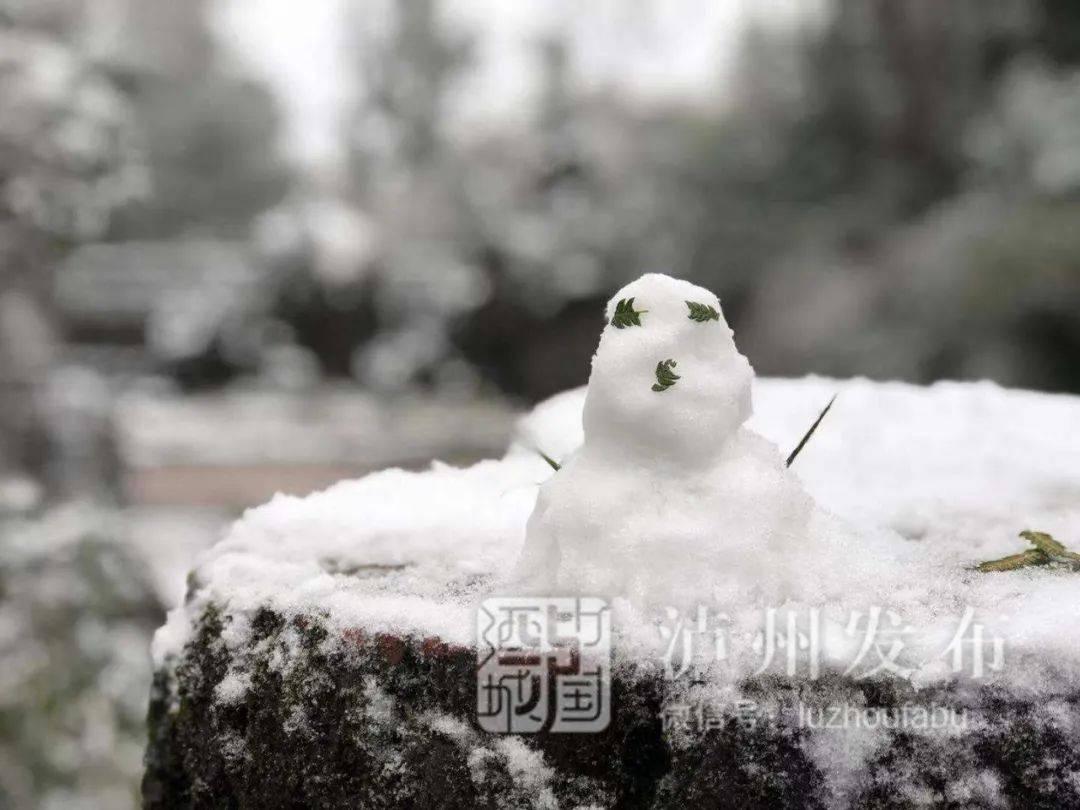 下҉ 雪҉ 啦҉!快来看,泸州人有多馋雪……