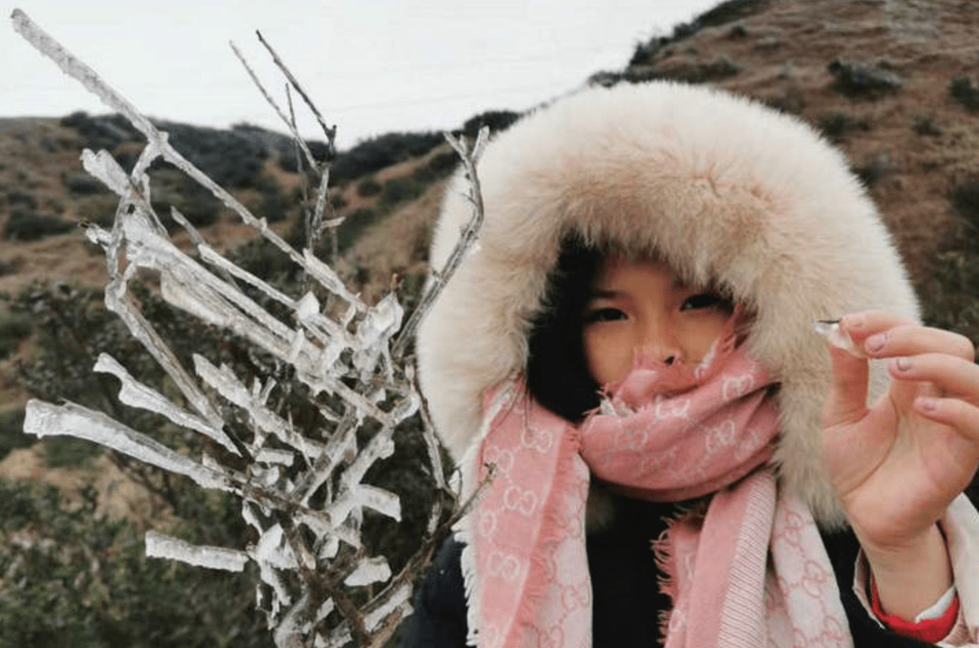 """云浮山区高地出现雾凇冰挂,游客不惧寒冷上山""""赏冰"""""""