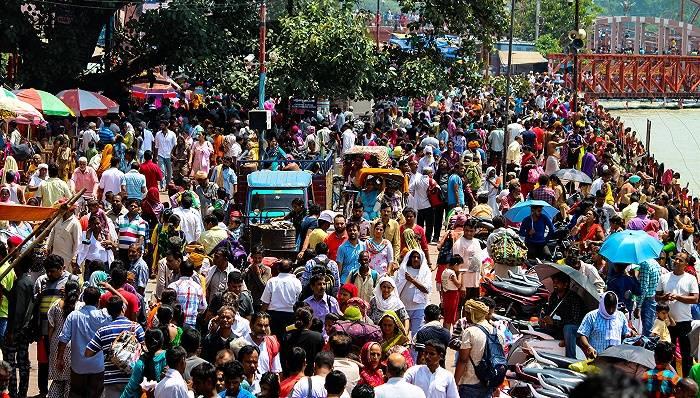双面印度手机市场
