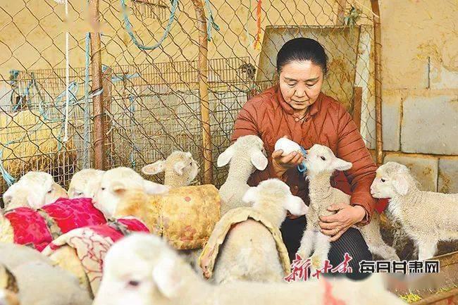山上减畜增草 山下扩群增畜——肃南县转变畜牧业生长方式助力牧民增收:亚博ag到账速度快的
