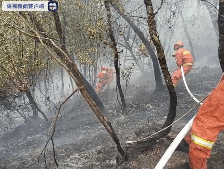 四川甘孜州九龙县山林火灾:火灾现场已获得全方位操纵 仅有零星