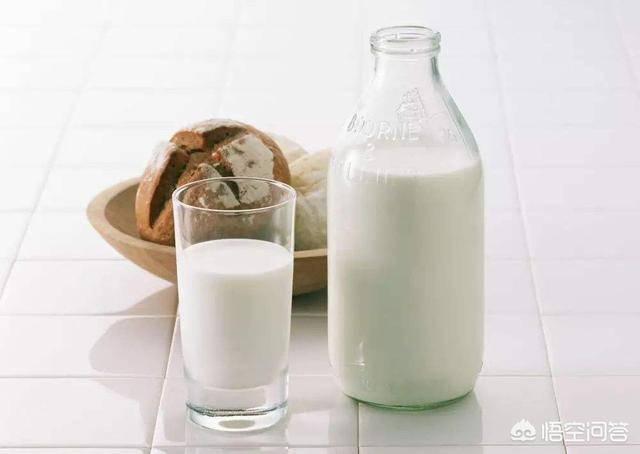 中国纯牛奶品牌排行榜(国产最好的纯牛奶)