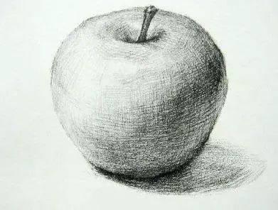 苹果素描图片步骤(素描静物苹果画法步骤)
