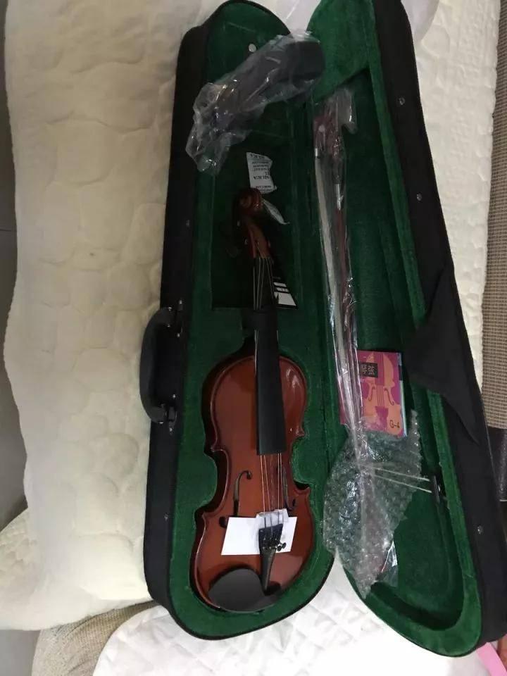 学小提琴烧钱吗(一把小提琴为什么这么贵)插图(6)