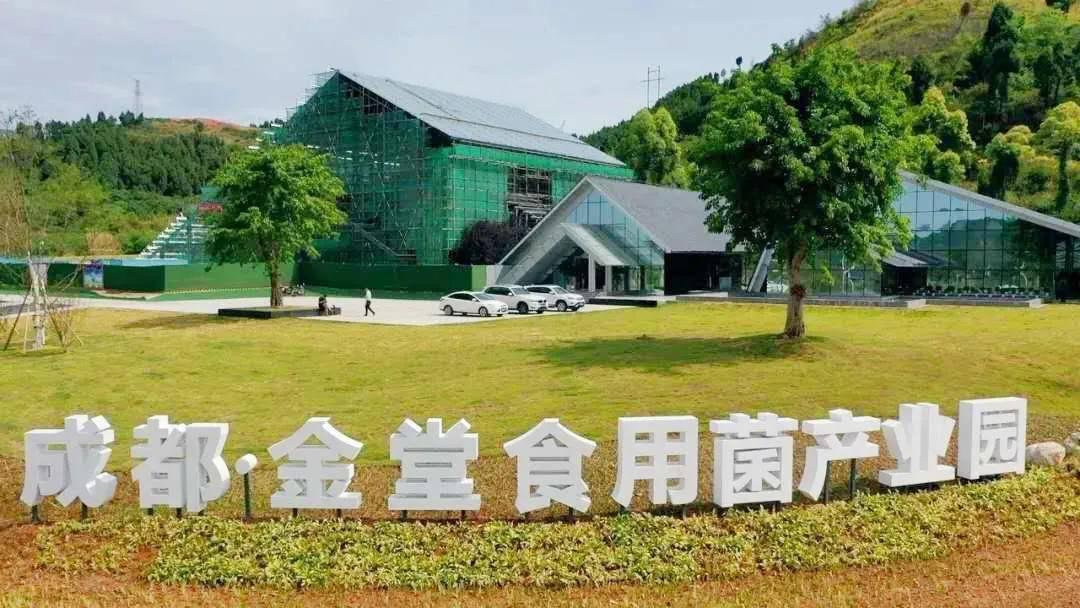 金堂县gdp_2020年四川十强县,其中5县GDP超过400亿元