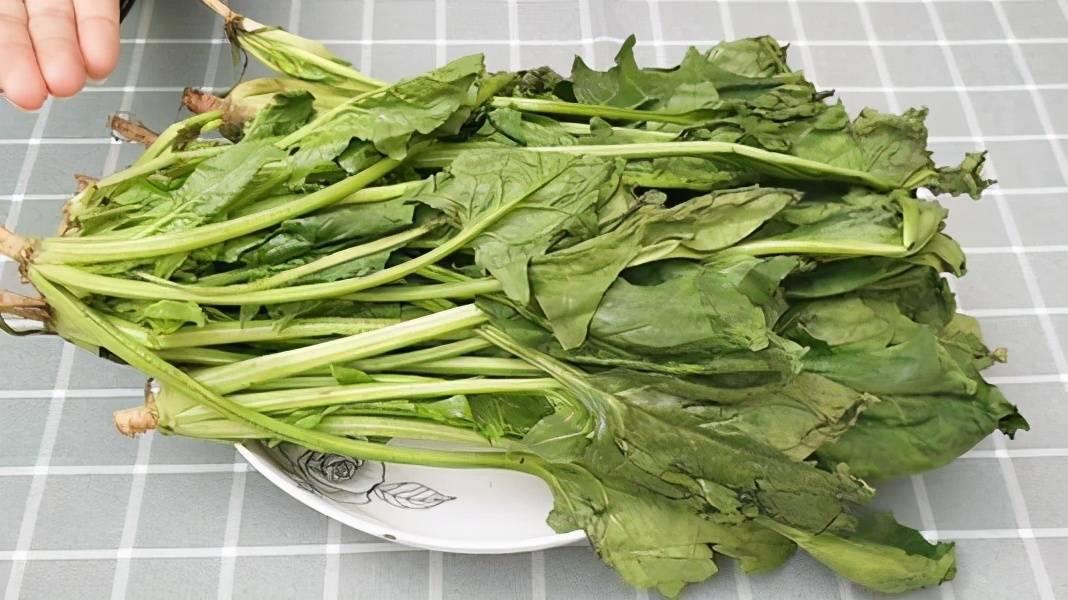 经常吃菠菜能补铁补血?辟谣:吃草酸前焯水时间一定不能错
