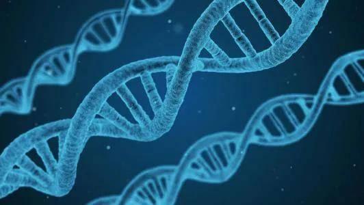 天顺招商乙肝在研新药Myrcludex B,基于首步骤,介绍靶点历程_HBsAg