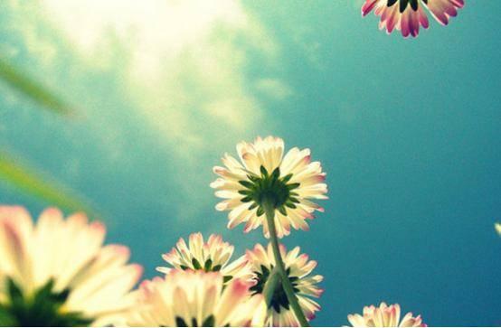 恭喜3生肖,2月下旬10天内,财运节节高,桃花朵朵开,双喜临门!  第3张