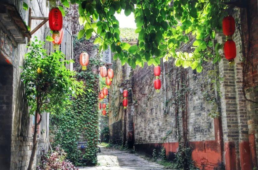 原创             东莞小众打卡地,大隐隐于市的古村落,转角遇见最美风景