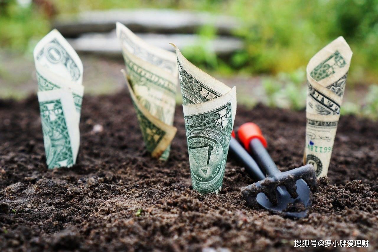 在家赚钱的几种方法,定投基金之后,遇到大跌之后,要不要手动加仓?