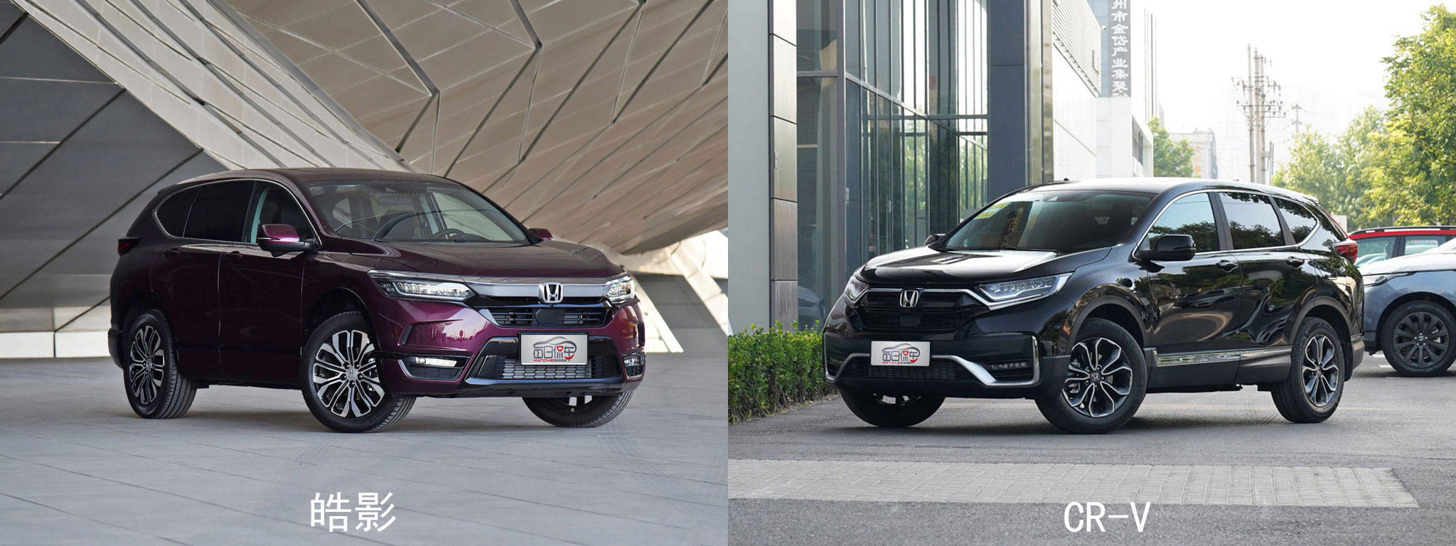 寻找同一个品牌,同一个平台,同一个车型,不同的CR-V和郝颖的区别