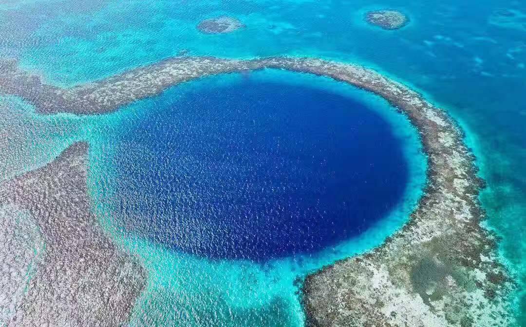 不吹牛,在距离我国最远的加勒比海,我曾和鲨鱼群一起游泳嬉戏过