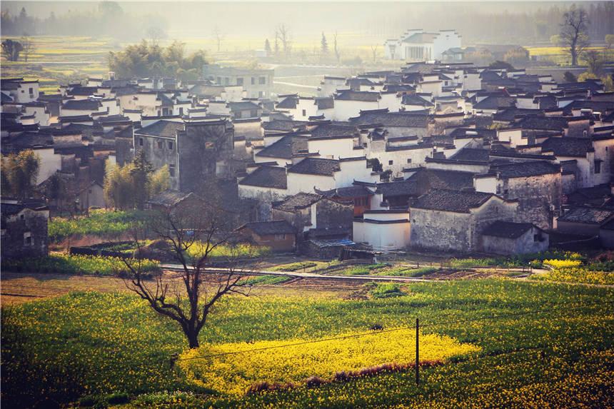 春天赏花来安徽,这个古村紧挨宏村,低调小众美如画卷,游客很少