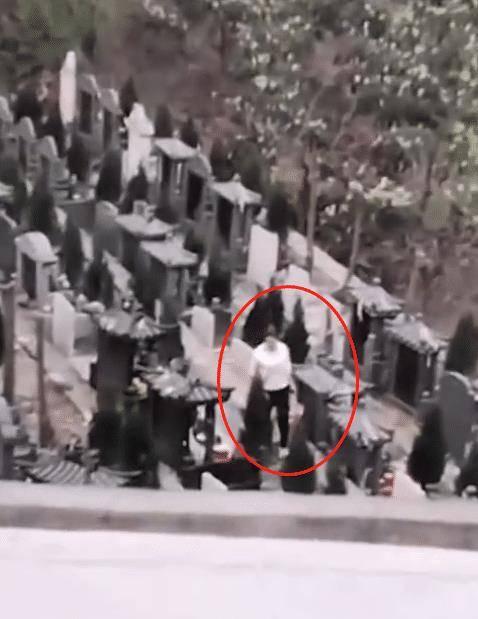 贵州一女子手提布袋,于墓园中收取贡品,无视其他祭拜者