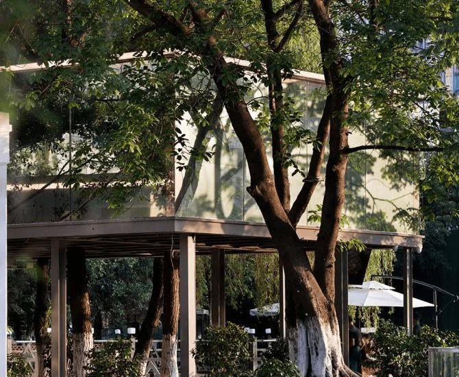 成都美食探店|百元打卡成都新晋网红餐厅,超适合约会拍照!