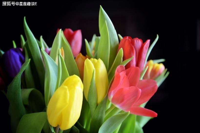 在3月中旬,两情相悦,幸福蔓延,其乐融融的三大星座