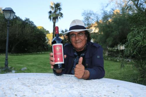 圣贝尼酒神干红名流大咖的推荐红酒