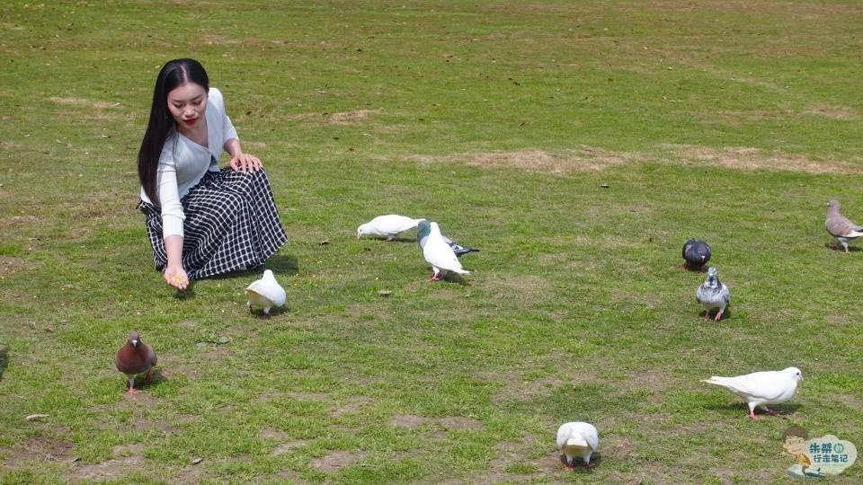 安吉中南百草原,这个春天给了我很多的惊喜