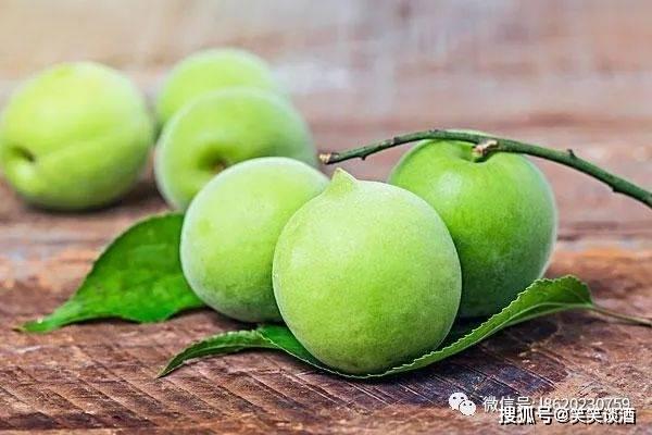 2019重庆火锅食材展会时间表果酒技术-青梅子酒的酿造方法