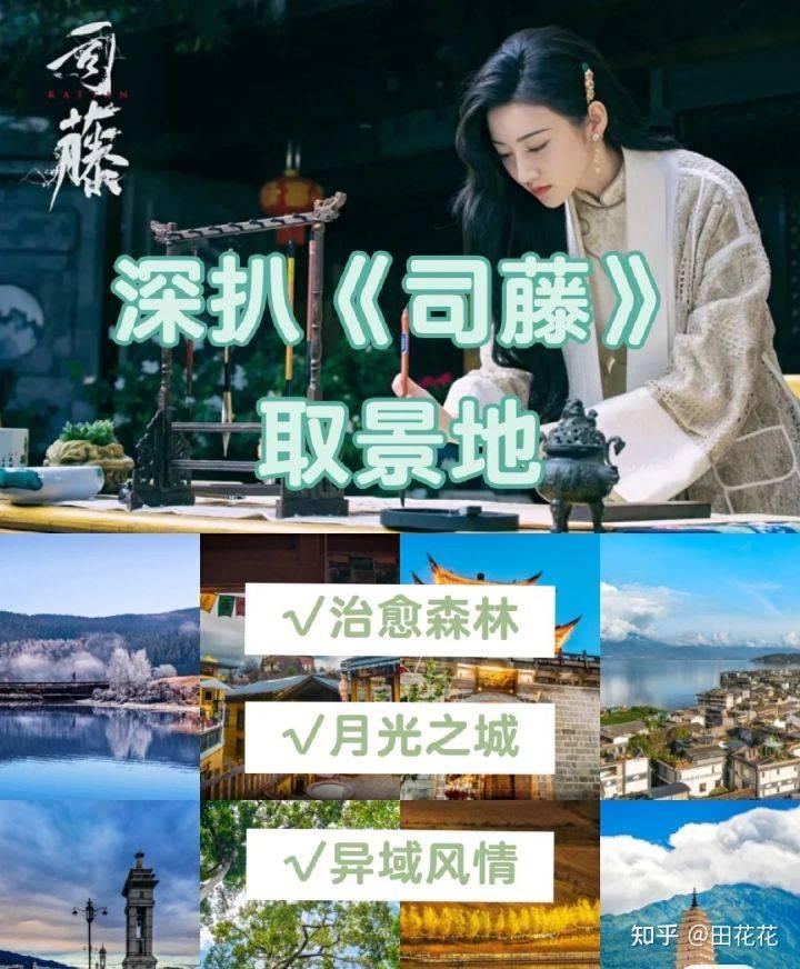 五一云南旅游打卡司藤取景地