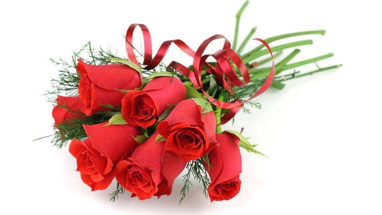 心理测试:选出你最喜欢的玫瑰,测你是越长越漂亮还是越长越丑?  第2张