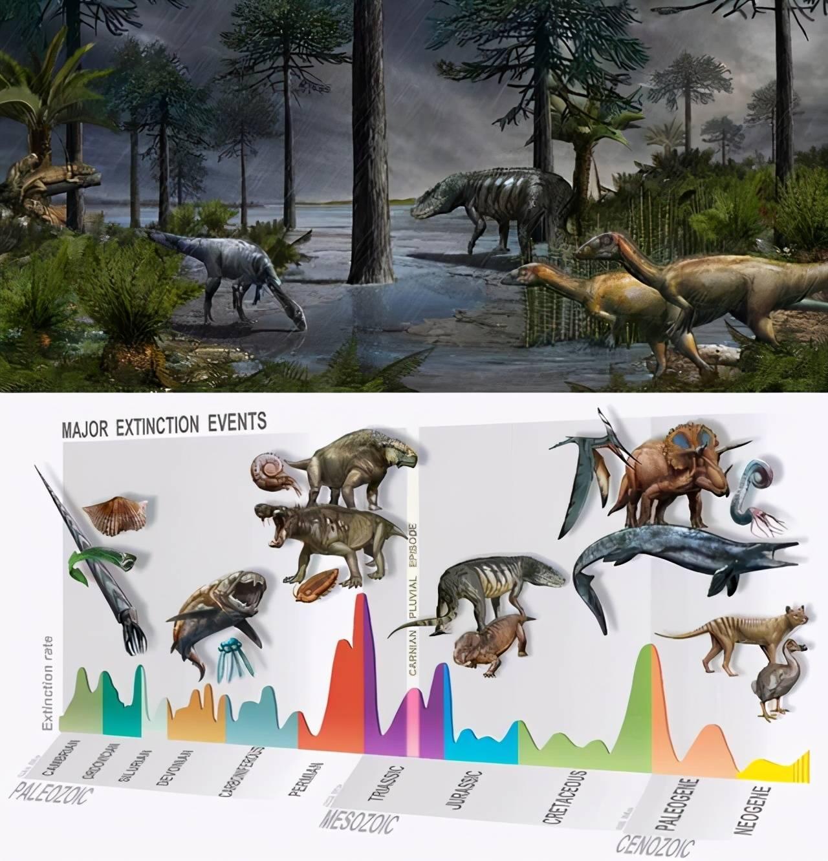 地球正进入第六次大灭绝时代?科学家:前所未有的危机或将到来  第6张