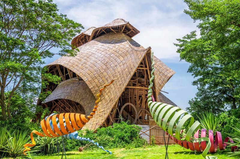 南沙水鸟世界:给你一个难忘的盛夏,享受自然之趣,感受竹韵之美