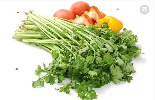 心理测试:四种蔬菜你最讨厌哪一种?测你最近会发生什么事情  第2张