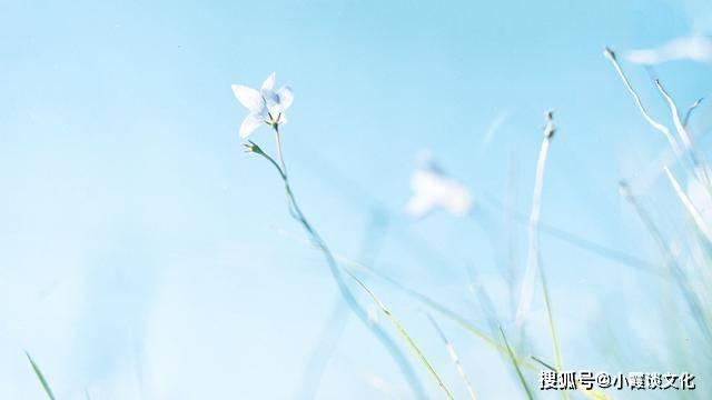 非常经典的句子:笑看得失才会海阔天空,心有透明才会春暖花开