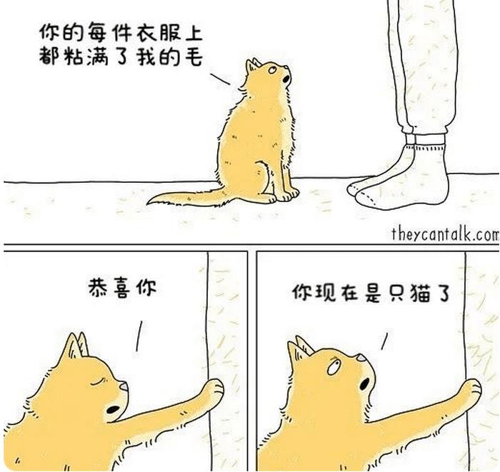 小貓咪能有什麼壞心思?畫師用靈性漫畫,繪製寵物會說什麼話