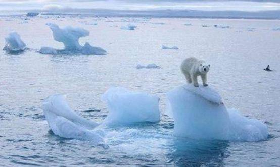 全球变暖将停止,全球要开始降温了?专家表示将会冷得离谱