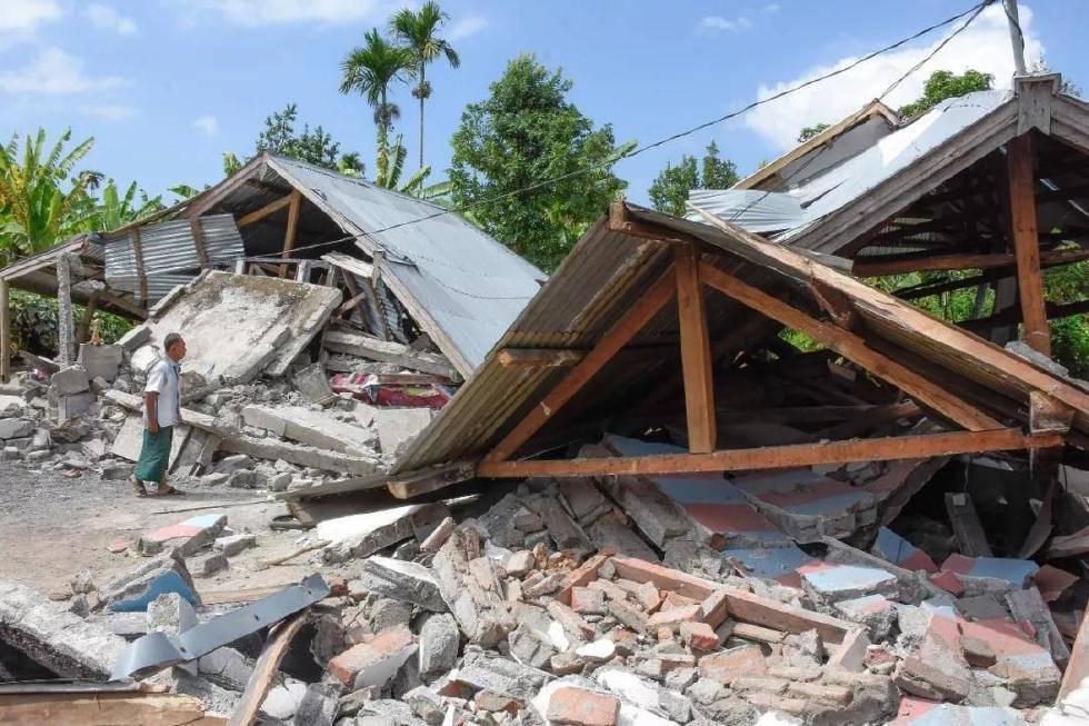 云南野象群距离楚雄震中仅15公里,它们真的提前感知到了地震?