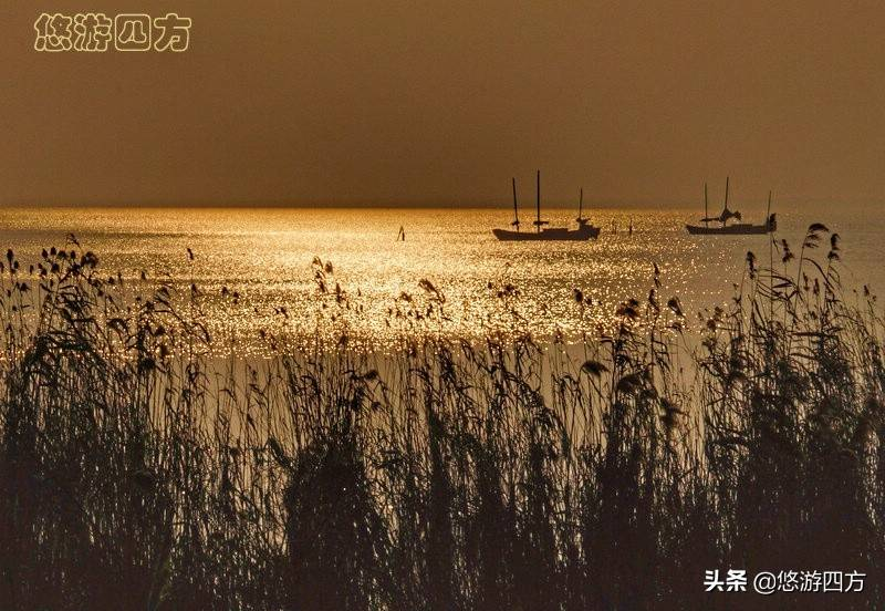 被武进抛弃的太湖第二大岛,今成无锡旅游天堂,常州人追悔莫及