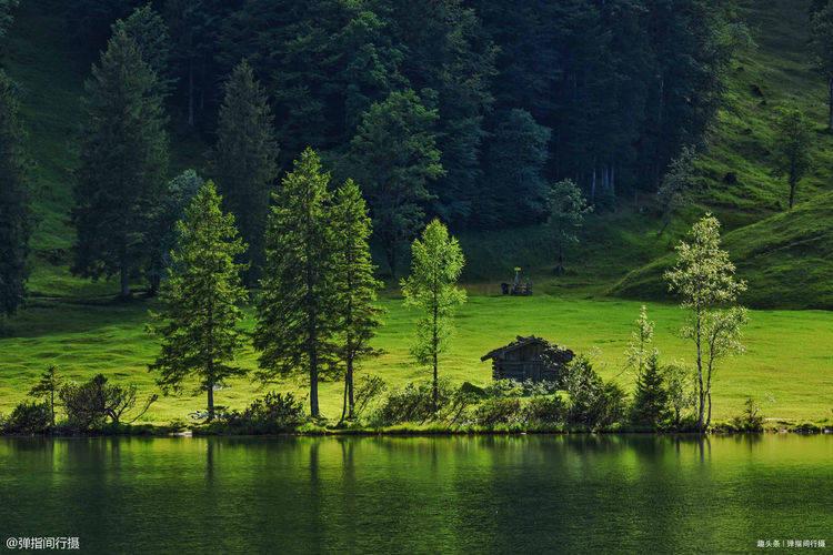 德国鲜为人知的湖泊,风光美生态好,湖中野生肥鱼野鸭肆意生长