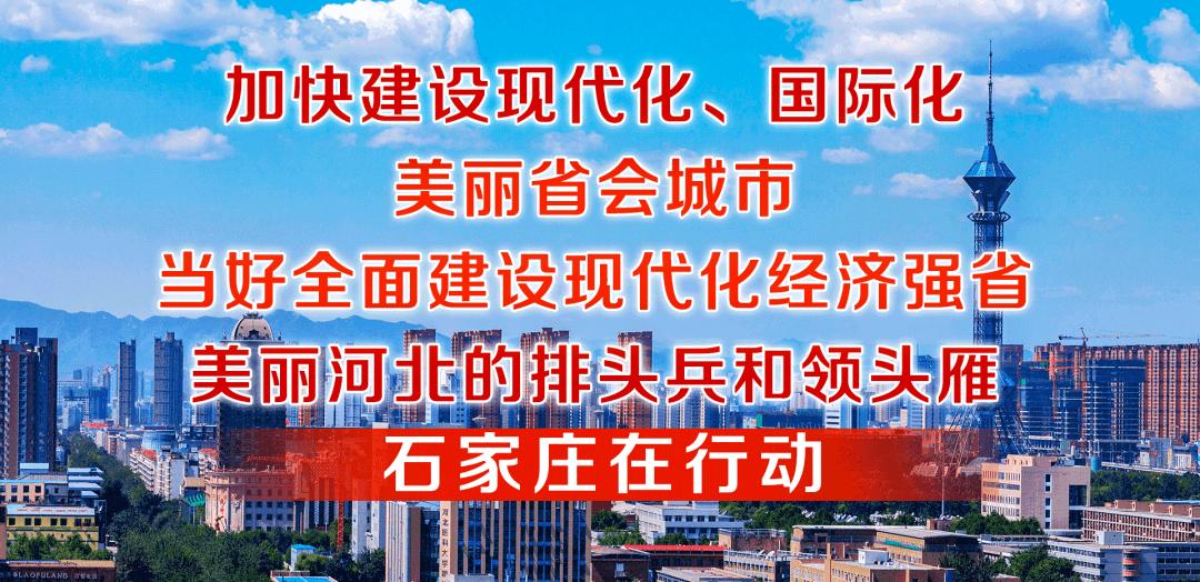 坚持和完善人民代表大会制度的生动实践 ——市十四届人大常委会工作综述