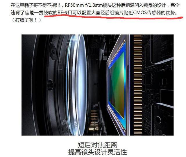 意料之中与意料之外——简评尼康Z40mm f/2镜头