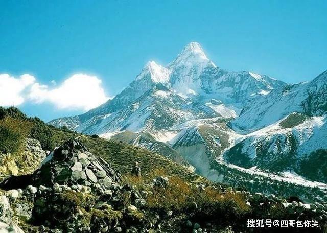 喜马拉雅山上长草了!专家说很正常,全球变暖是幕后元凶?