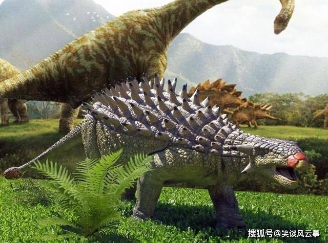 """原创             恐龙中的""""虎式坦克"""":迅猛龙咬一口能崩掉牙,甲龙有多强悍?"""