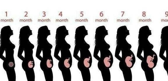 8个月的胎儿有什么变化?孕妈要注意这5点,好好度过整个孕期