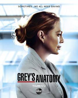 实习医生格蕾第十七季