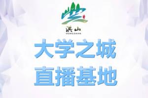 UVO優微歐經紀立項—助力武漢洪山大學之城直播基地