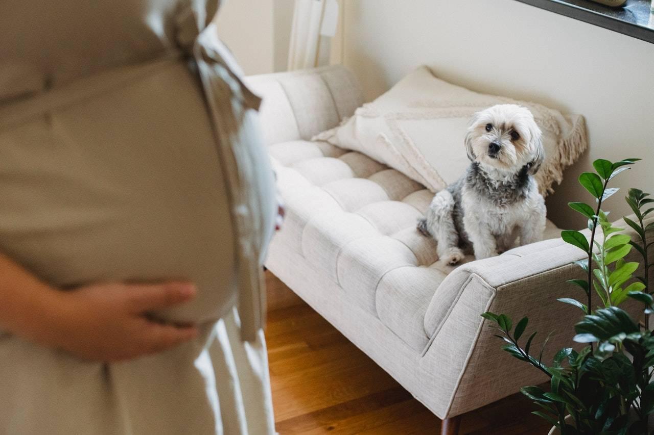 孕期過敏怎麼辦