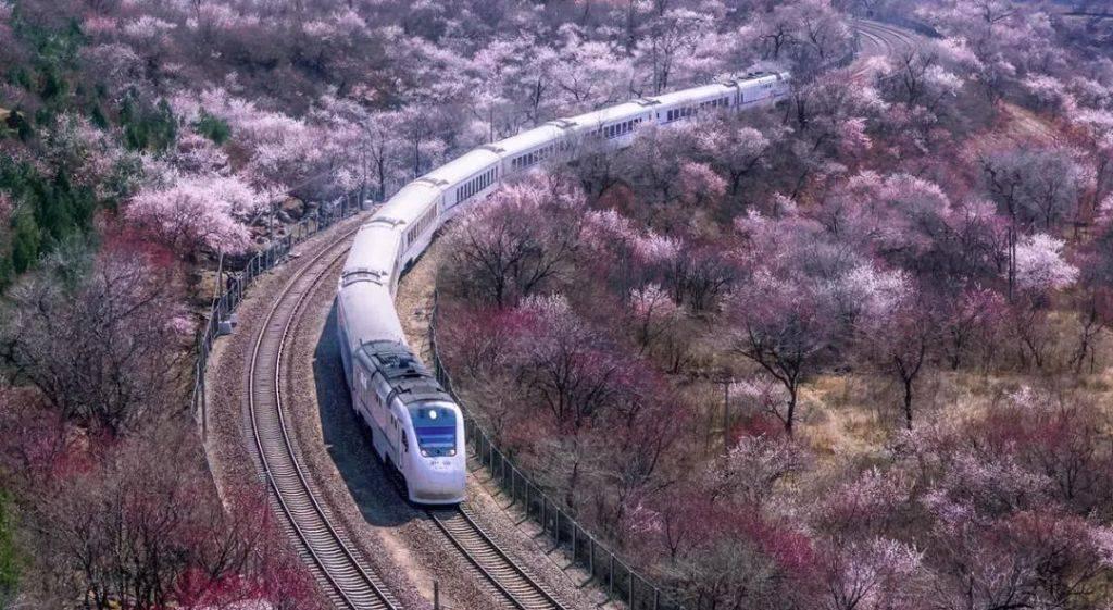 魏广悦《北京公交站名的来历(36)八达岭站》
