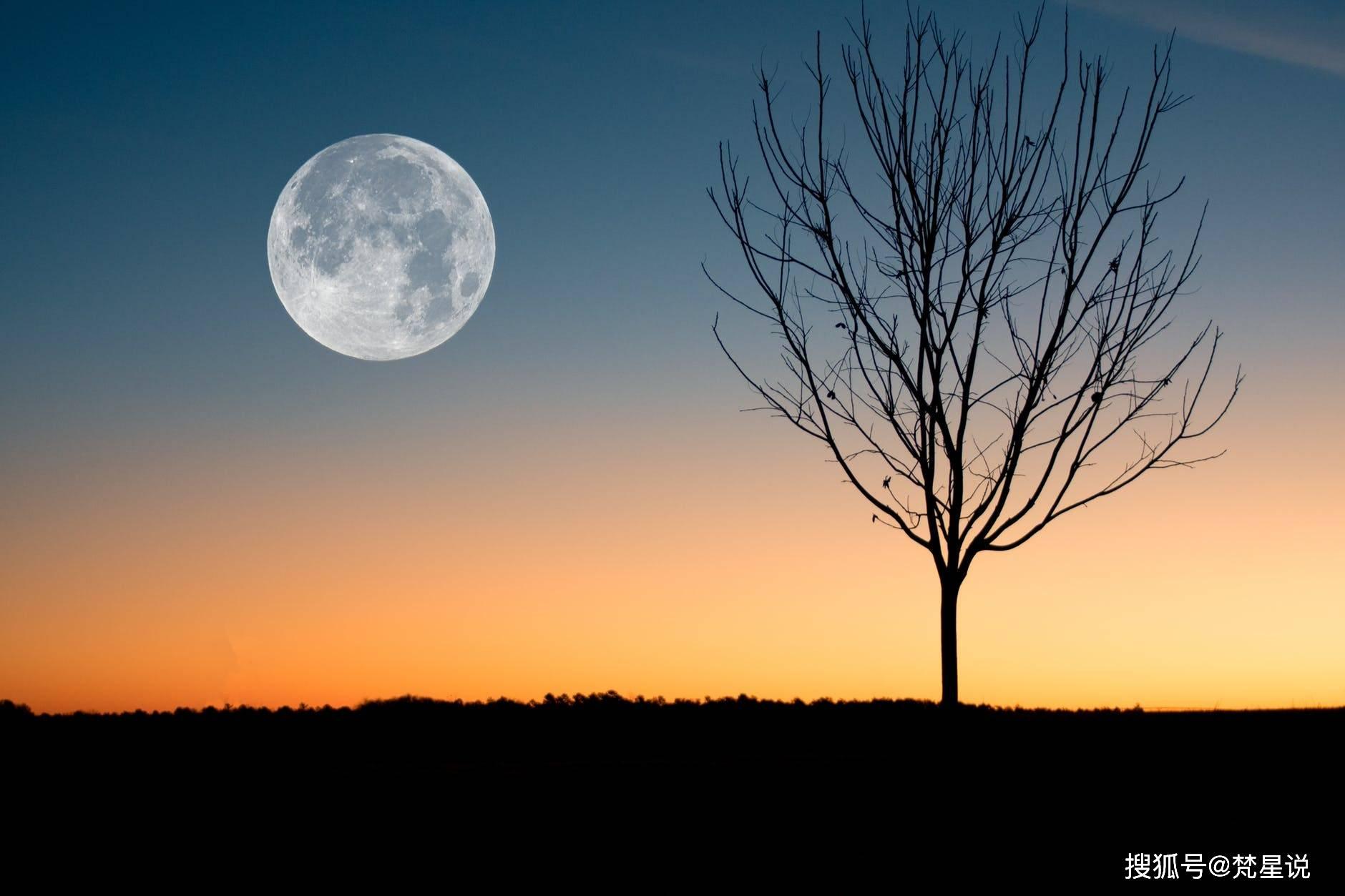 太阳与月亮落在同一星座的小伙伴,更容易成为人生赢家