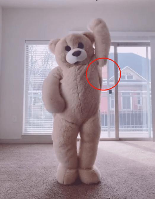 新晋表情包Tik Tok圈粉百万,网友:原来你是这样的熊熊