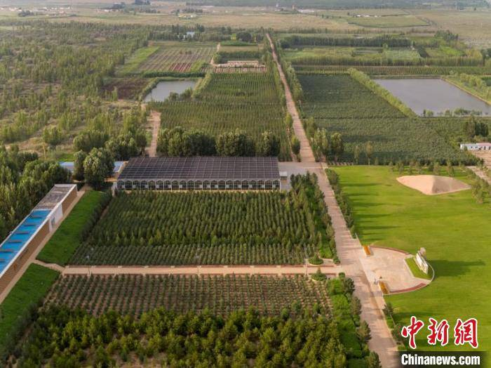"""中国第七大沙漠上的""""生态科技""""元素"""
