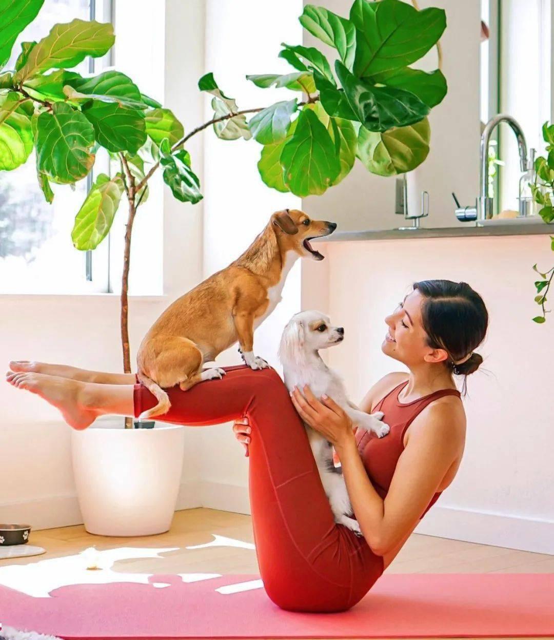 10个瑜伽体式,适合30岁以上女性,清除盆腔垃圾,暖宫养颜!