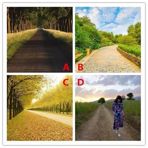 选一条小路,看在你心里最在意的是什么