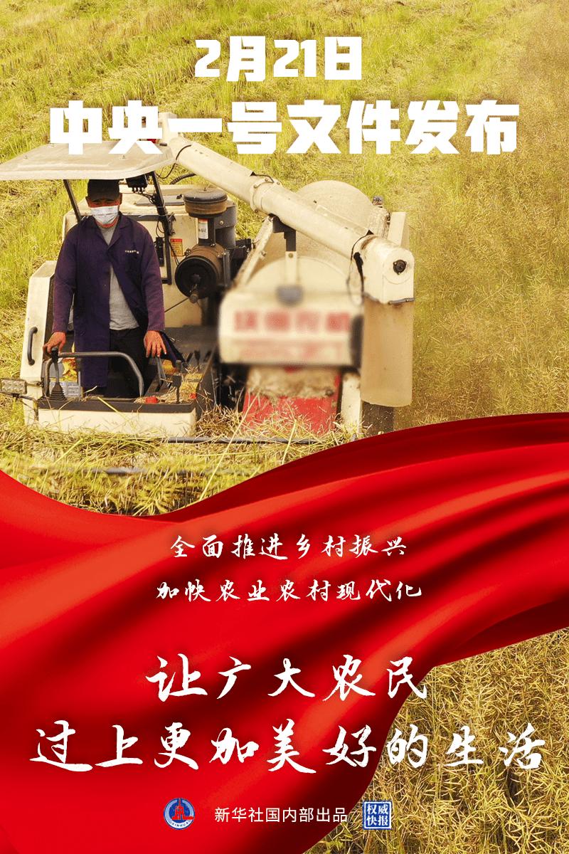 权威快报丨2021年中央一号文件提出全面推进乡村振兴