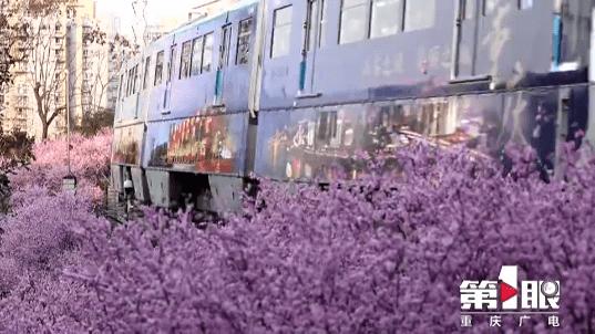 """揭秘!开往春天的列车 背后团队这样""""操盘"""""""